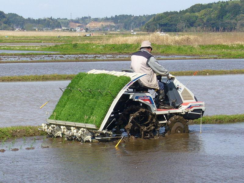 800px-Rice-planting-machine,katori-city,japan