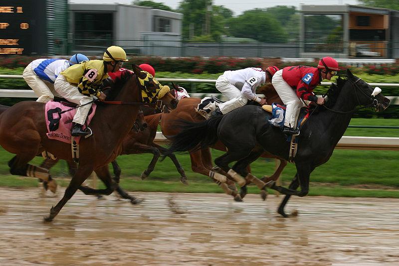 800px-Horse_race,_Churchill_Downs_2008-04-18