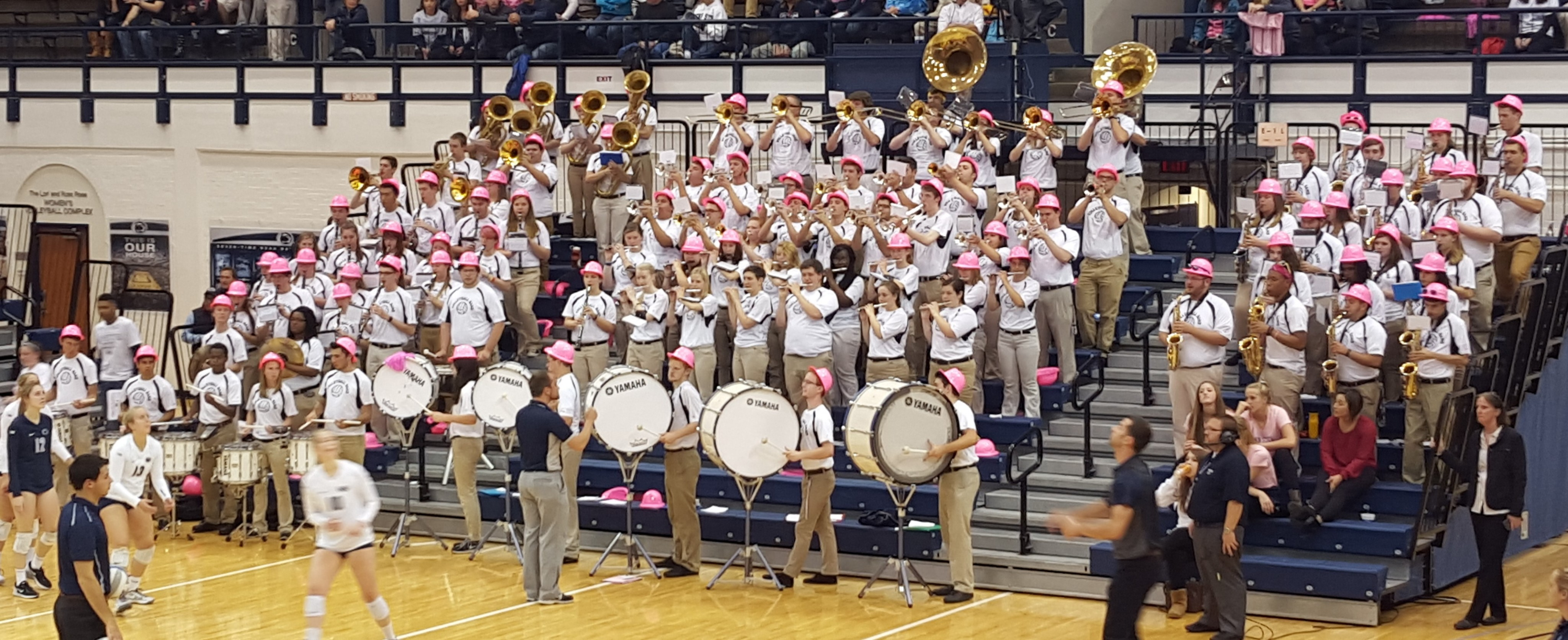 The Volleyball Pep Band was out in force for Dig Pink Night