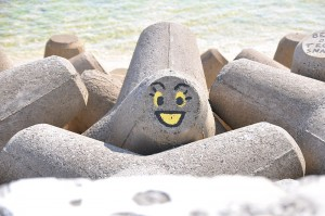 Smile_face_(3534599415)