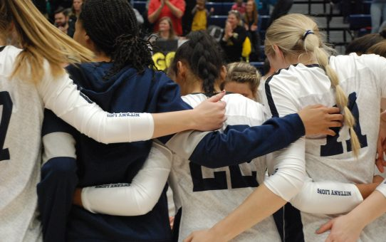Allyson Cathey No Longer Listed On Penn State Volleyball Roster