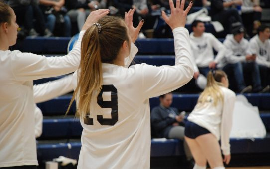 Penn State Women's Volleyball Pauses All Team-Related Activities